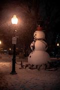 10th Feb 2020 - snowy nite