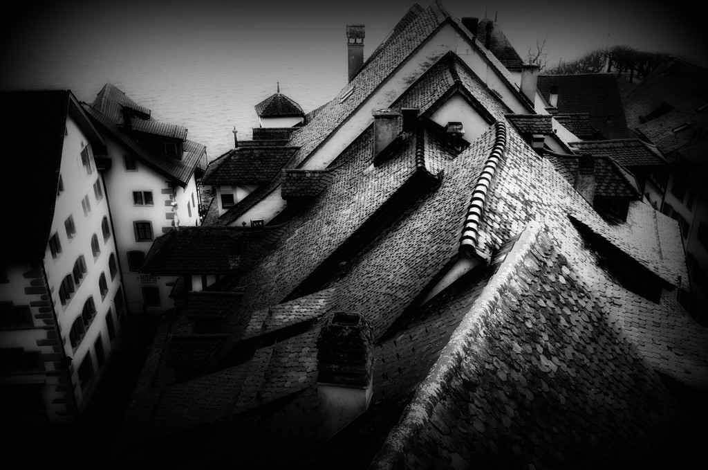 2020-02-12 rooftops by mona65