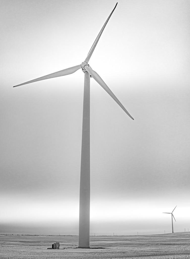 Sycronized Windmills  by bokehdot