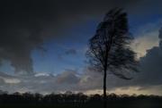 13th Feb 2020 - dark clouds