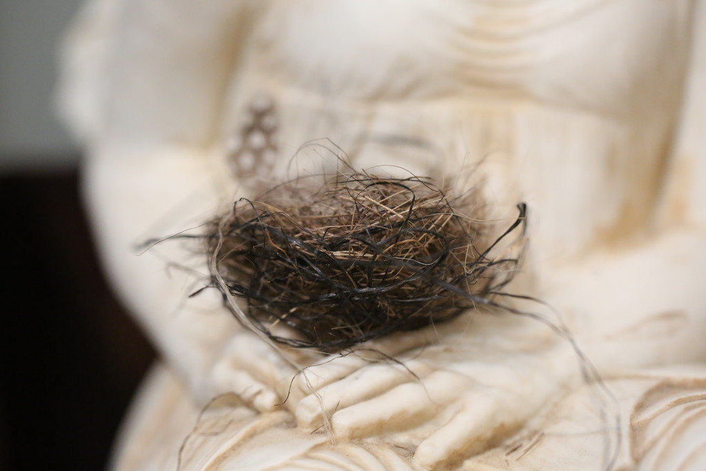 nest... by earthbeone