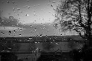 13th Feb 2020 - And more rain......