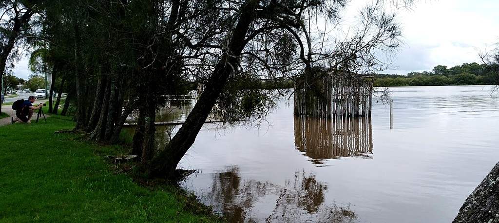 Boatshed in the Maroochy river at full high tide today by 777margo