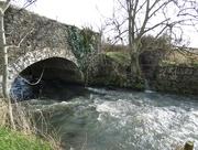 12th Feb 2020 - Bridge over the River Cary