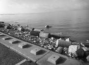 13th Feb 2020 - sea defences