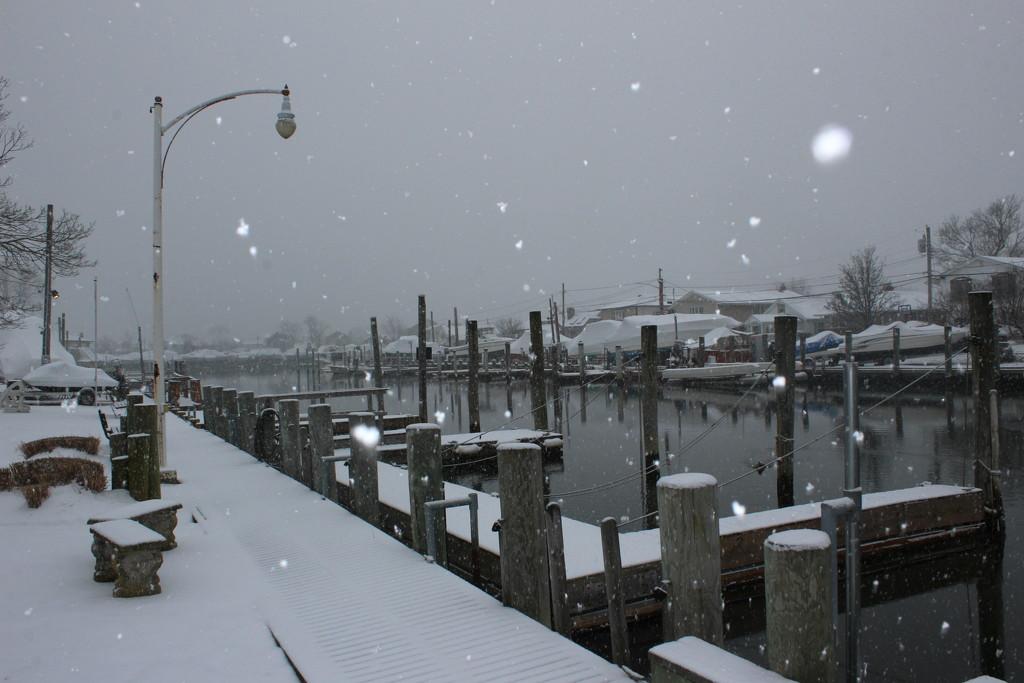 Snowy Day by jb030958
