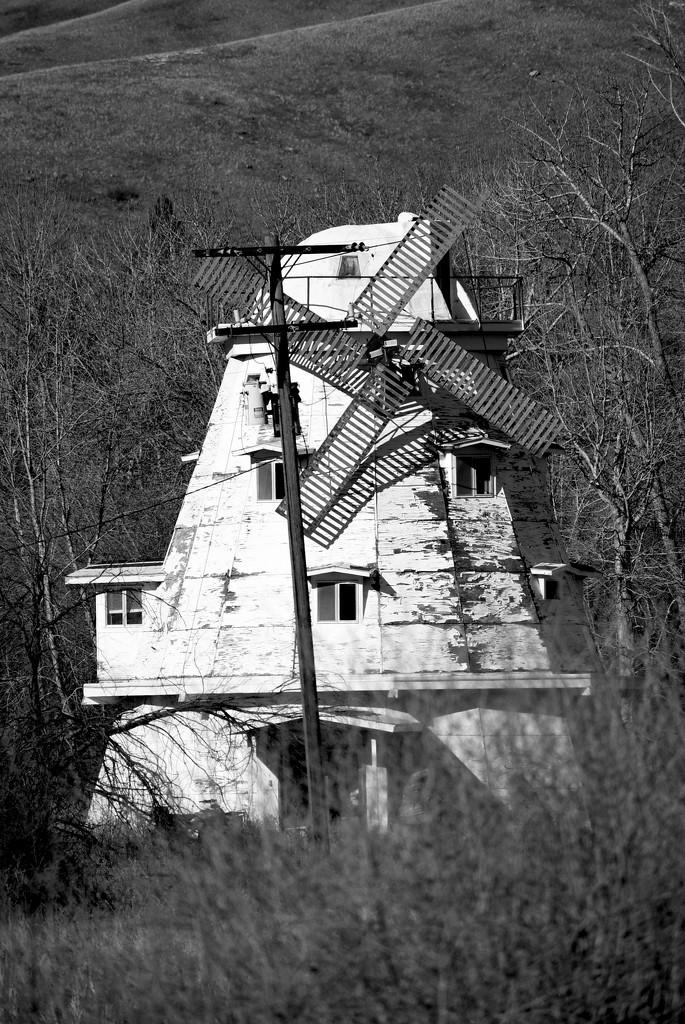 Windmill by bjywamer
