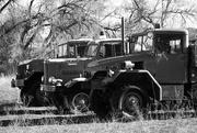 13th Feb 2020 - Vintage Fire Trucks