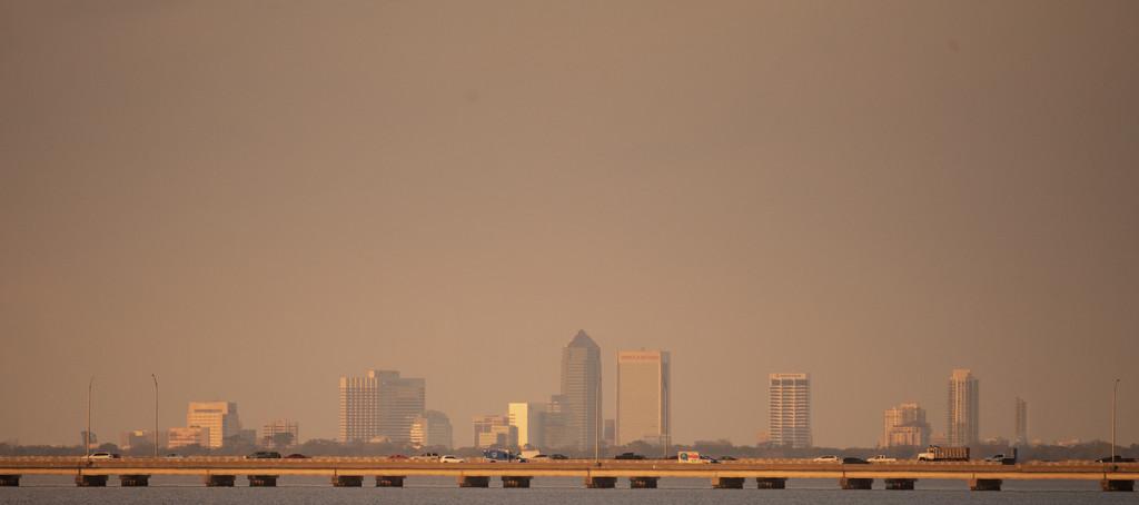 Skyline of Jacksonville! by rickster549