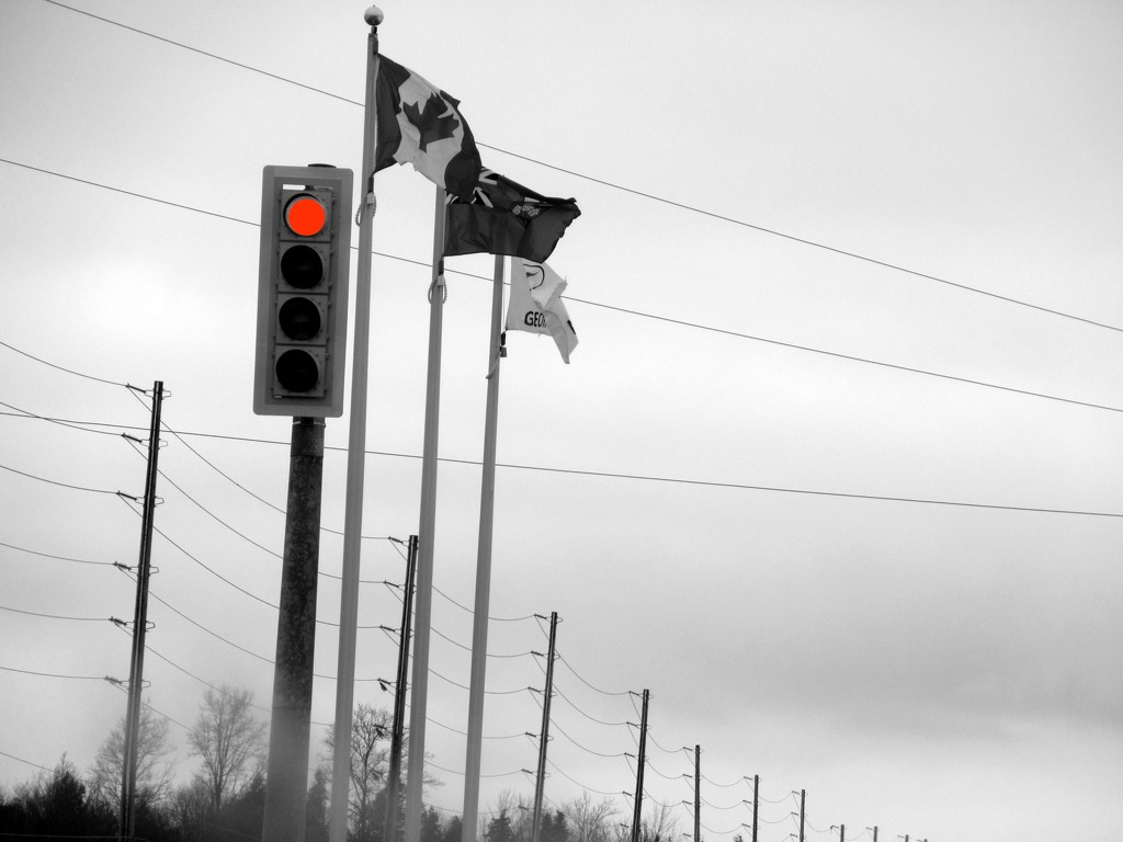 Lines poles and one red light by bruni