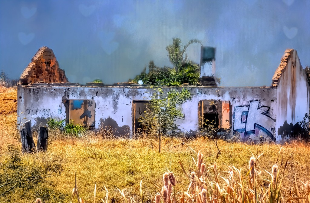 Someone must have loved their home.. by ludwigsdiana
