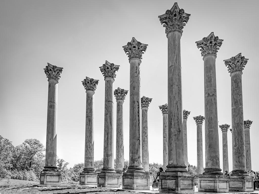 Capitol columns by jernst1779
