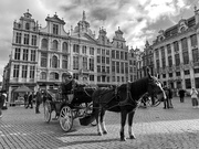 17th Feb 2020 - Brussels Grand Place