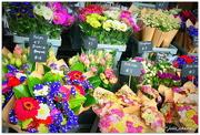 16th Feb 2020 - Flower Market...