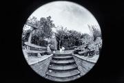 16th Feb 2020 - Garden steps