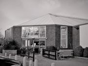 16th Feb 2020 - The garden centre