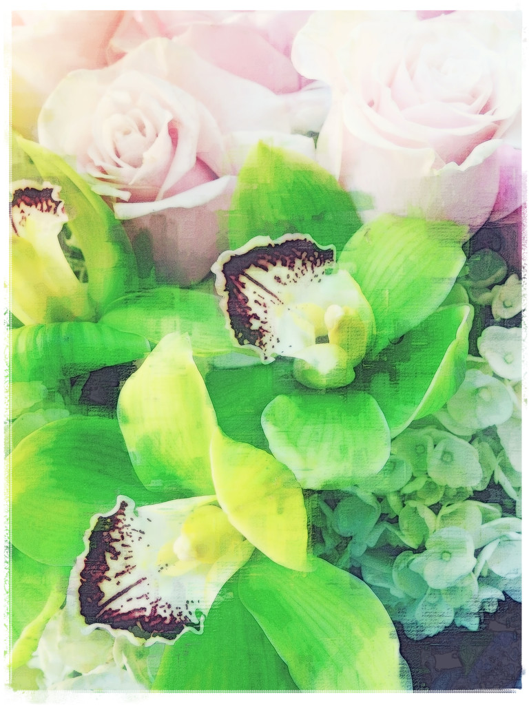 Flowers From My Own True Love by ddw