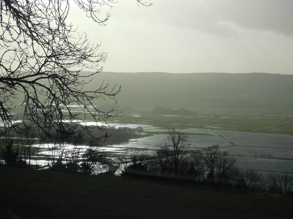 Lyth Valley  by anniesue