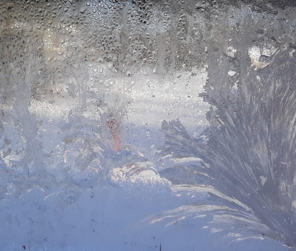 Jack Frost by julie