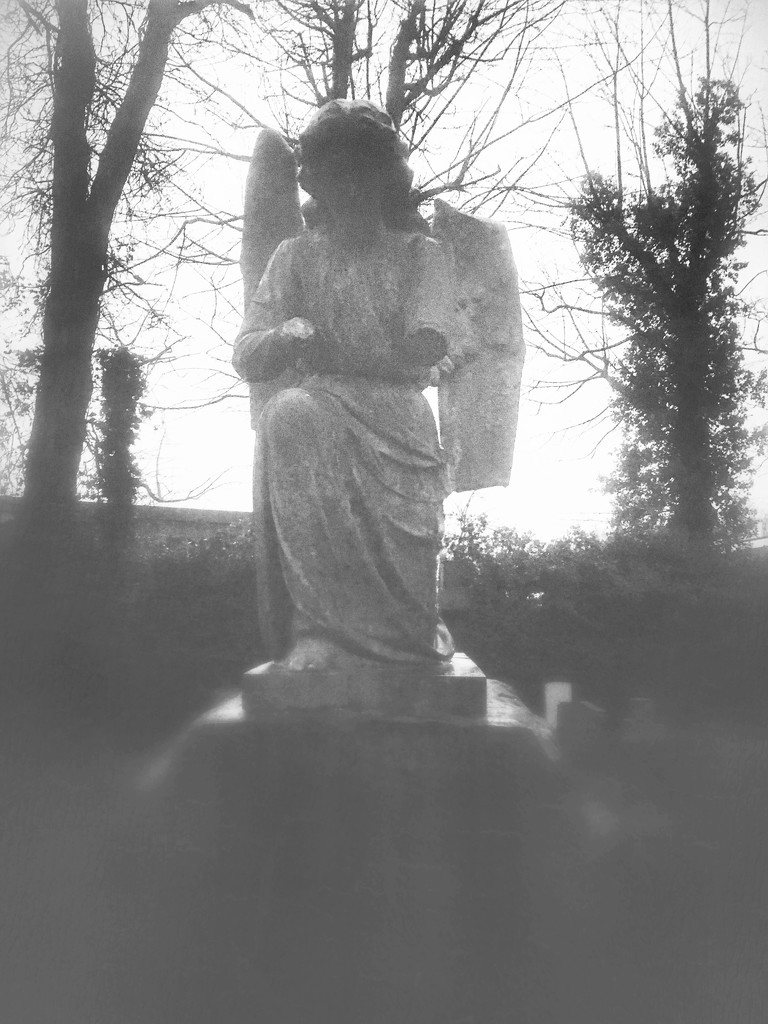 Weeping Angels by rachelwithey