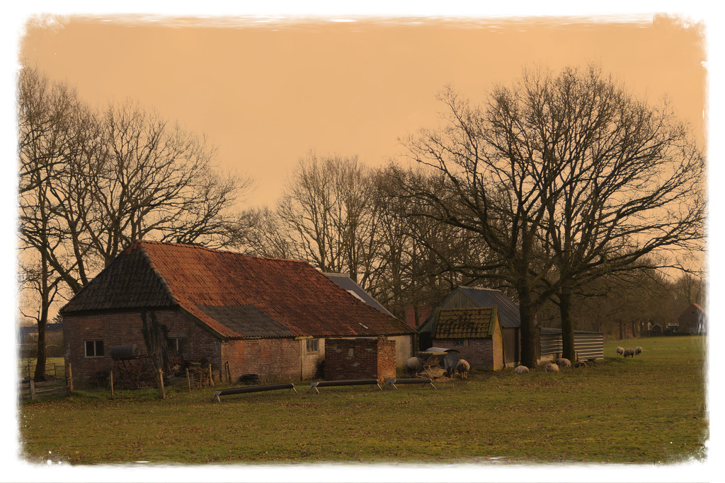 old farm  by gijsje