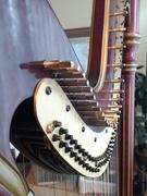 1st Jan 2020 - Harp, detail