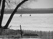 16th Feb 2020 - A stroll on the ice.