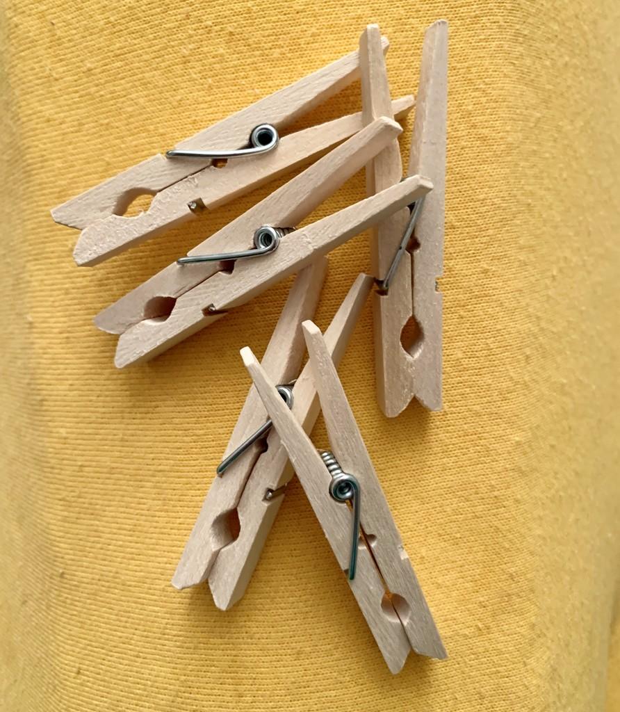 Clothes pegs. Birch wood. by elizabeth