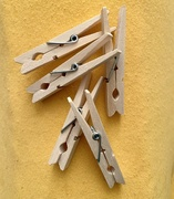 13th Feb 2020 - Clothes pegs. Birch wood.