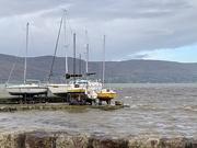 9th Feb 2020 - A tad windy on Carlingford Lough.