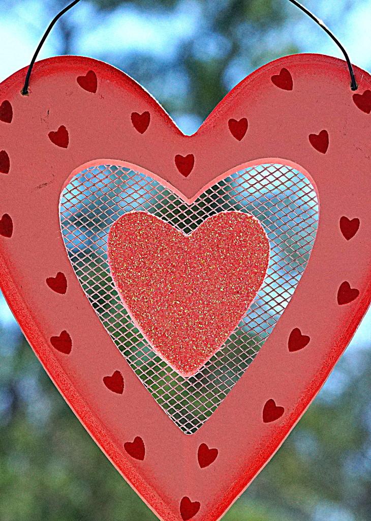 Heart # 15 by sunnygirl