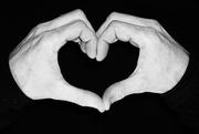 16th Feb 2020 - Heart #16