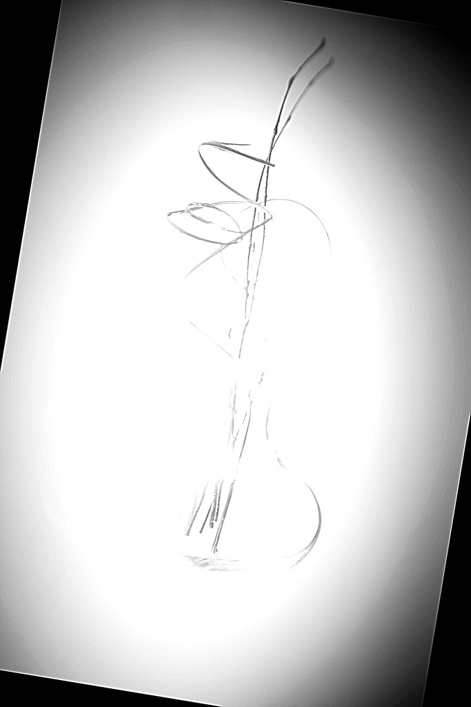 FOR No. 17-still life implied lines by joysabin