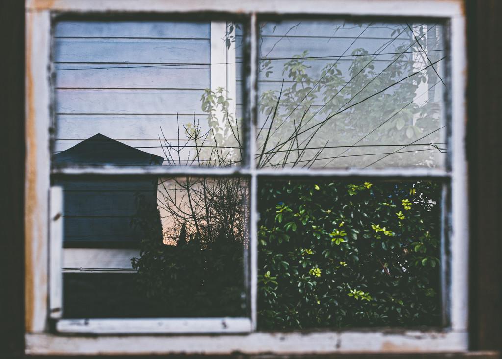 Window on the world by mamazuzi