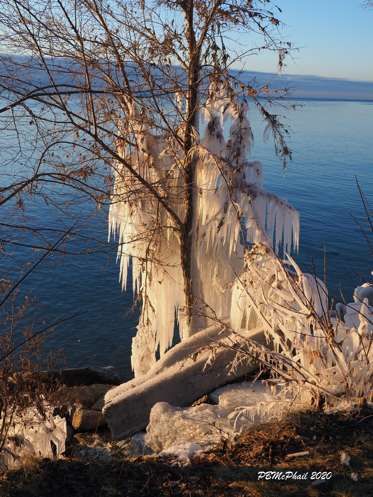 More Ice Sculptures 1 by selkie