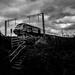 Moody Train