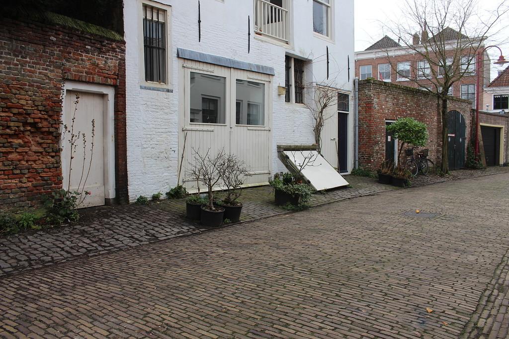 Street gardens 4 by pyrrhula