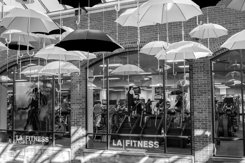 LA Fitness by tosee