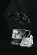 17th Feb 2020 - a still life of flowers