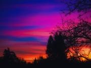 18th Feb 2020 - Beauty is Like a Sunset