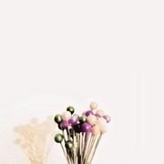 4th Feb 2020 - Bouquet