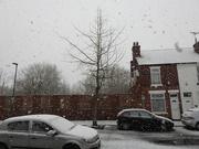 10th Feb 2020 - Snowing