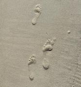 18th Feb 2020 - Footprints