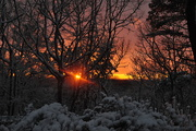 18th Feb 2020 - Sunset from my deck