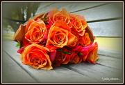 19th Feb 2020 - Whiskey Roses...