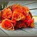 Whiskey Roses...