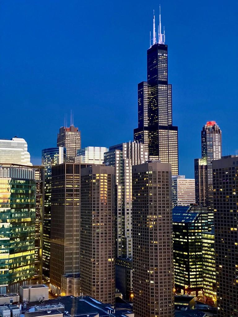 Sears Tower, the Blue Hour  by jyokota
