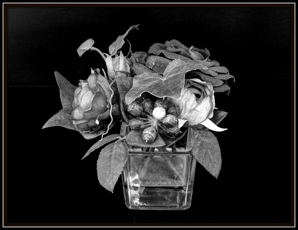 Bud vase - still life for Flash of Red by judithdeacon