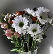 19th Feb 2020 - A bouquet of flowers