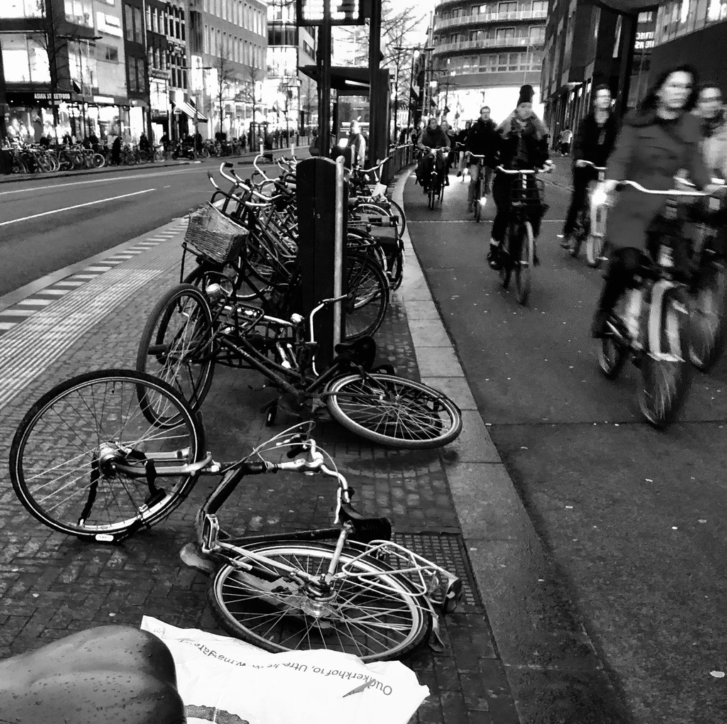 Bicycles 3 by jacqbb